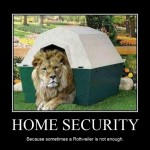 A Watch Lion for Home Security